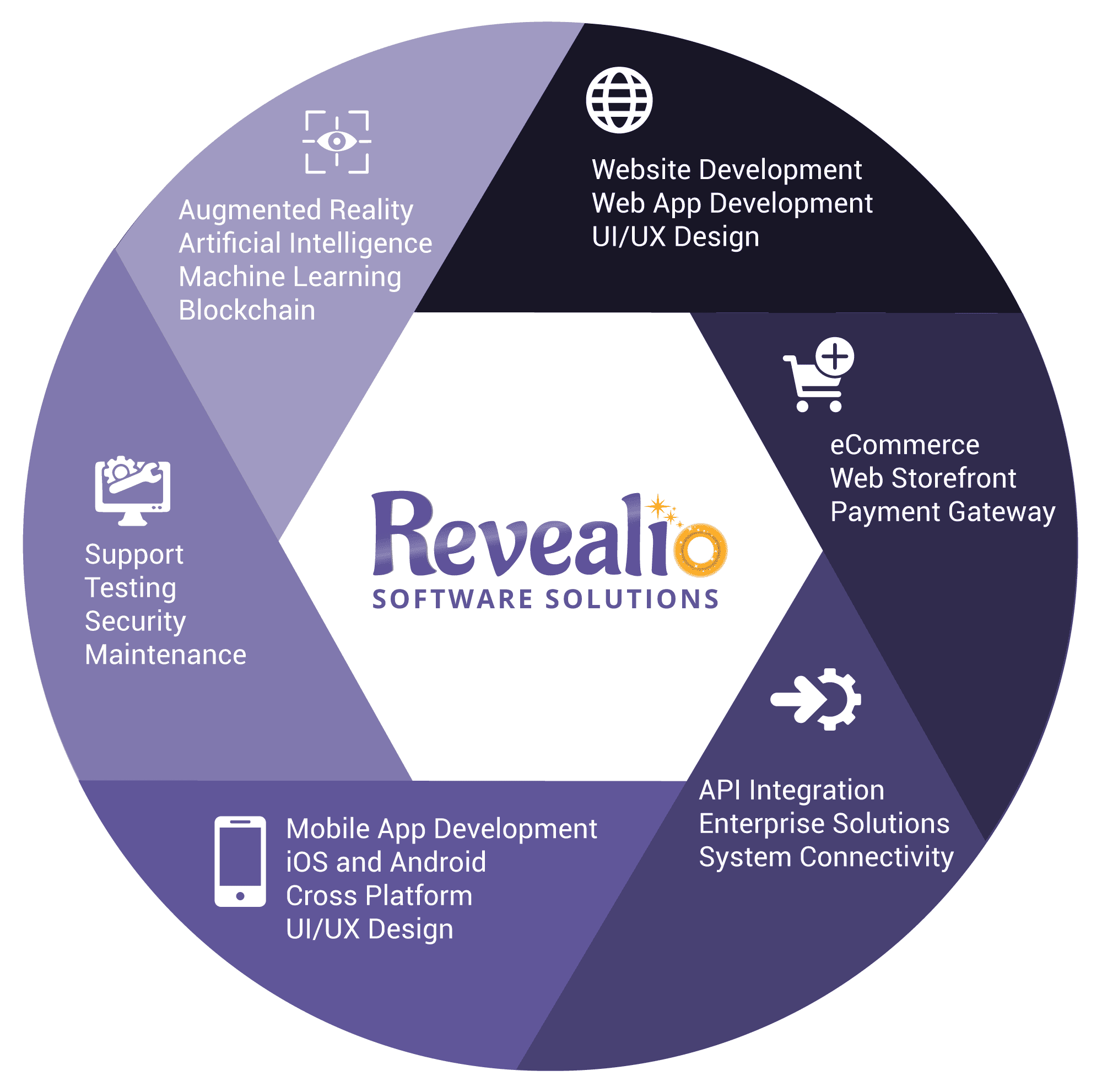 REVEALiO-Software-Services-Circle