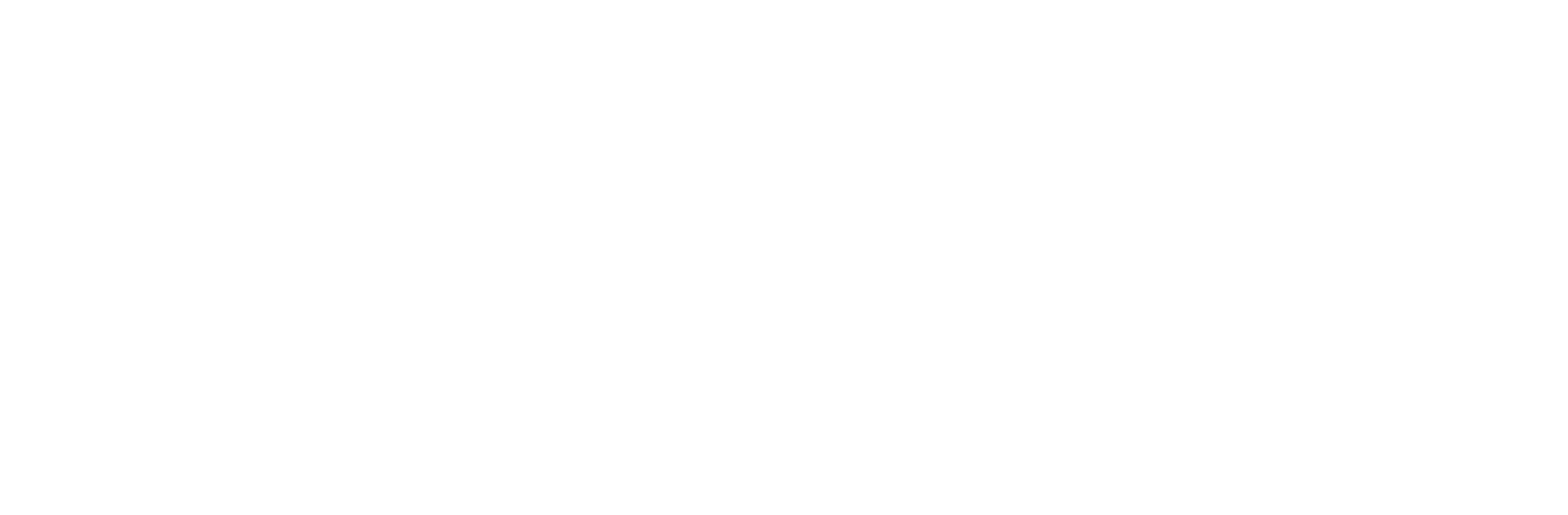 Revealio software and media solutions logo white