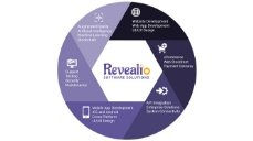 Software Services - REVEALiO
