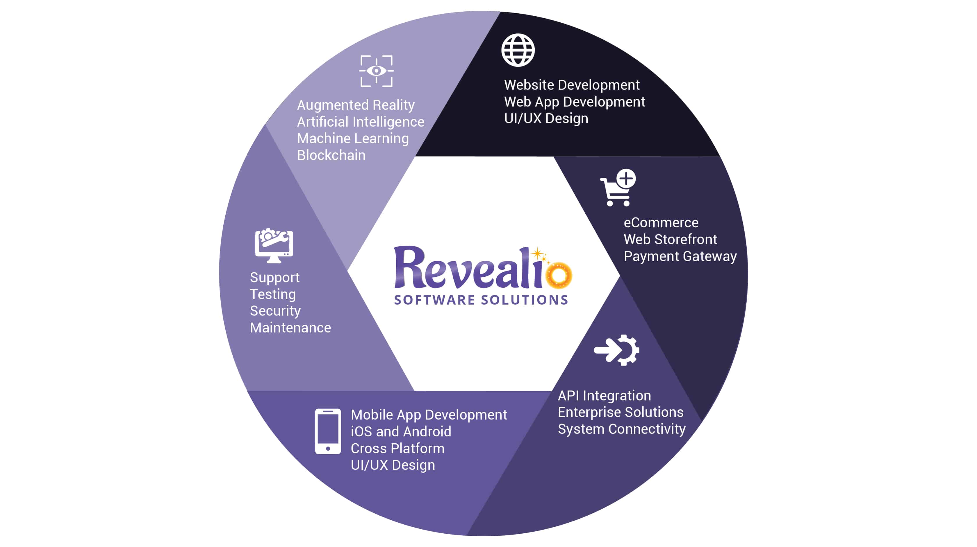 Revealio software solutions services