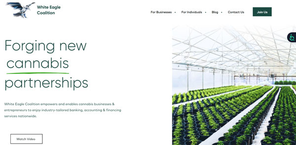 White Eagle Coalition Website Screenshot